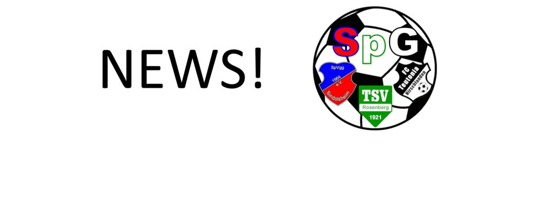 Nils Pollak wird neuer Trainer der SpG!