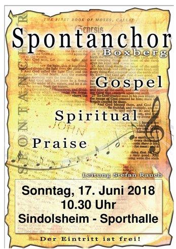 Spontanchor Sindolsheim 2018